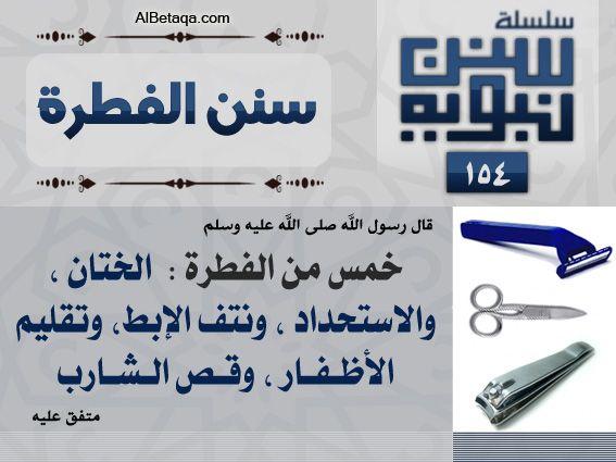 سنن نبوية Holy Quran Hadeeth Ahadith