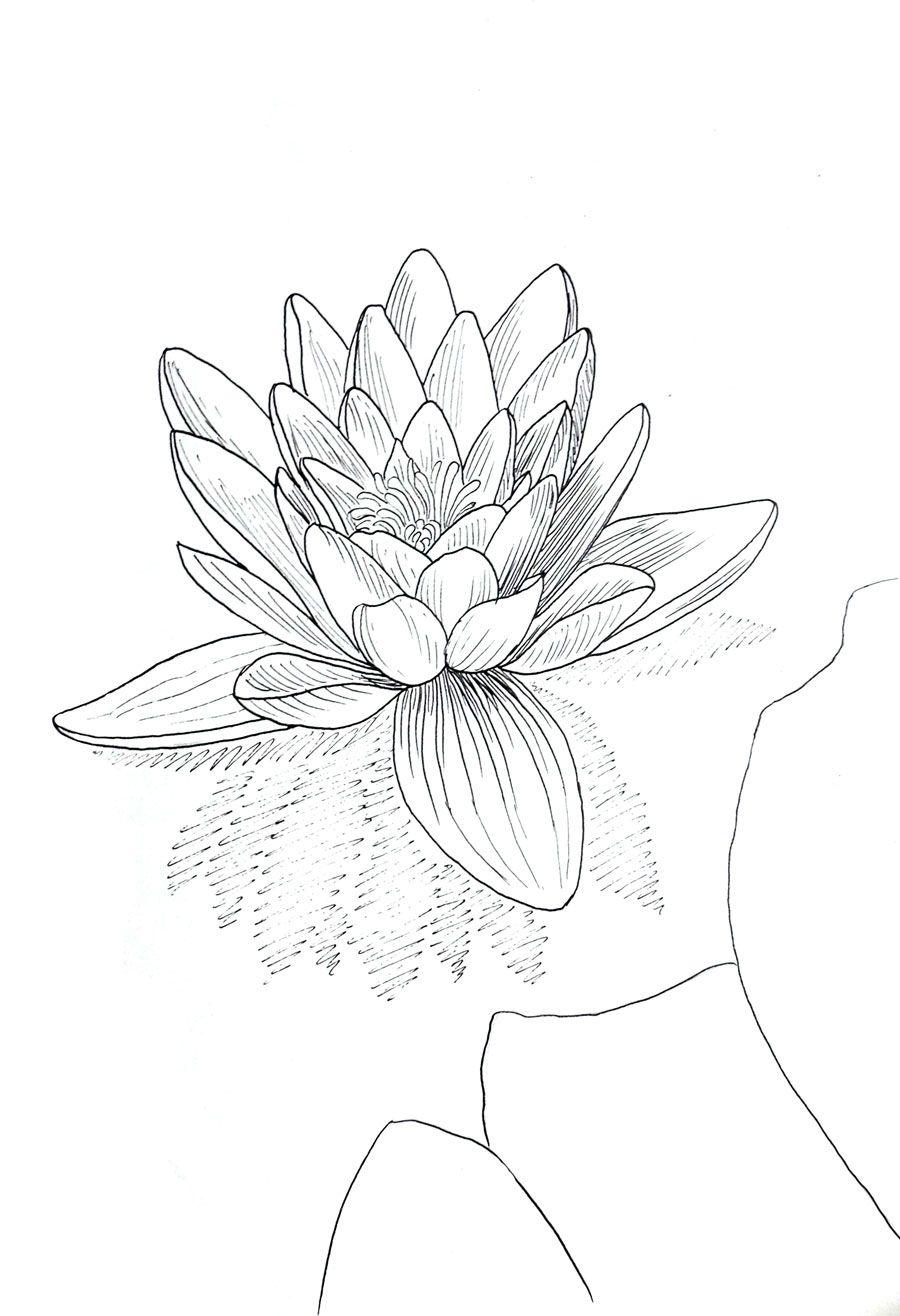 Rysunki Kwiatow Malarstwo Rysunek I Grafika Flower Drawing Ink Drawing Buddha Art