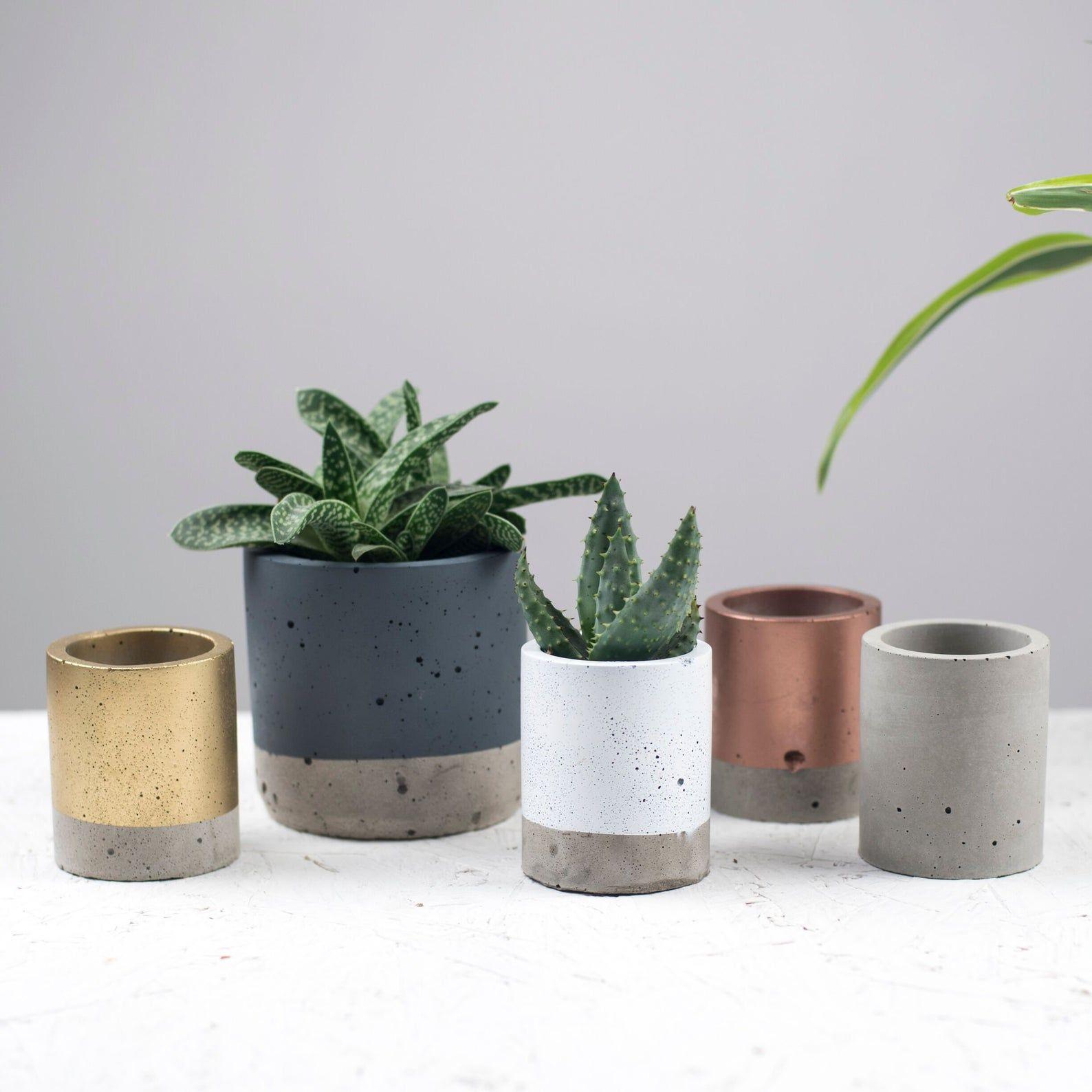 Concrete Colour Block Plant Pot Concrete Planter Cactus