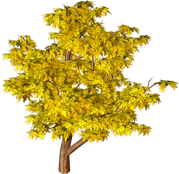Yellow Fall Tree PNG Clipart | Tree Art | Pinterest | Fall ...
