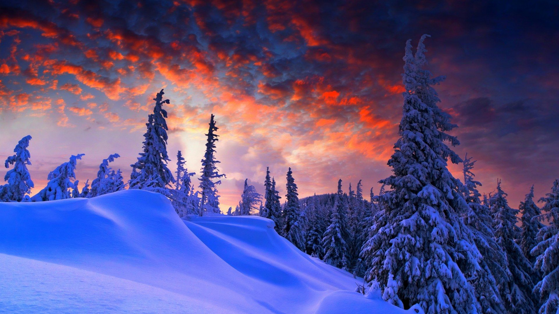 Evening Of Winter 1920x1080 Winter Wallpaper Digital Wallpaper Winter Scenes