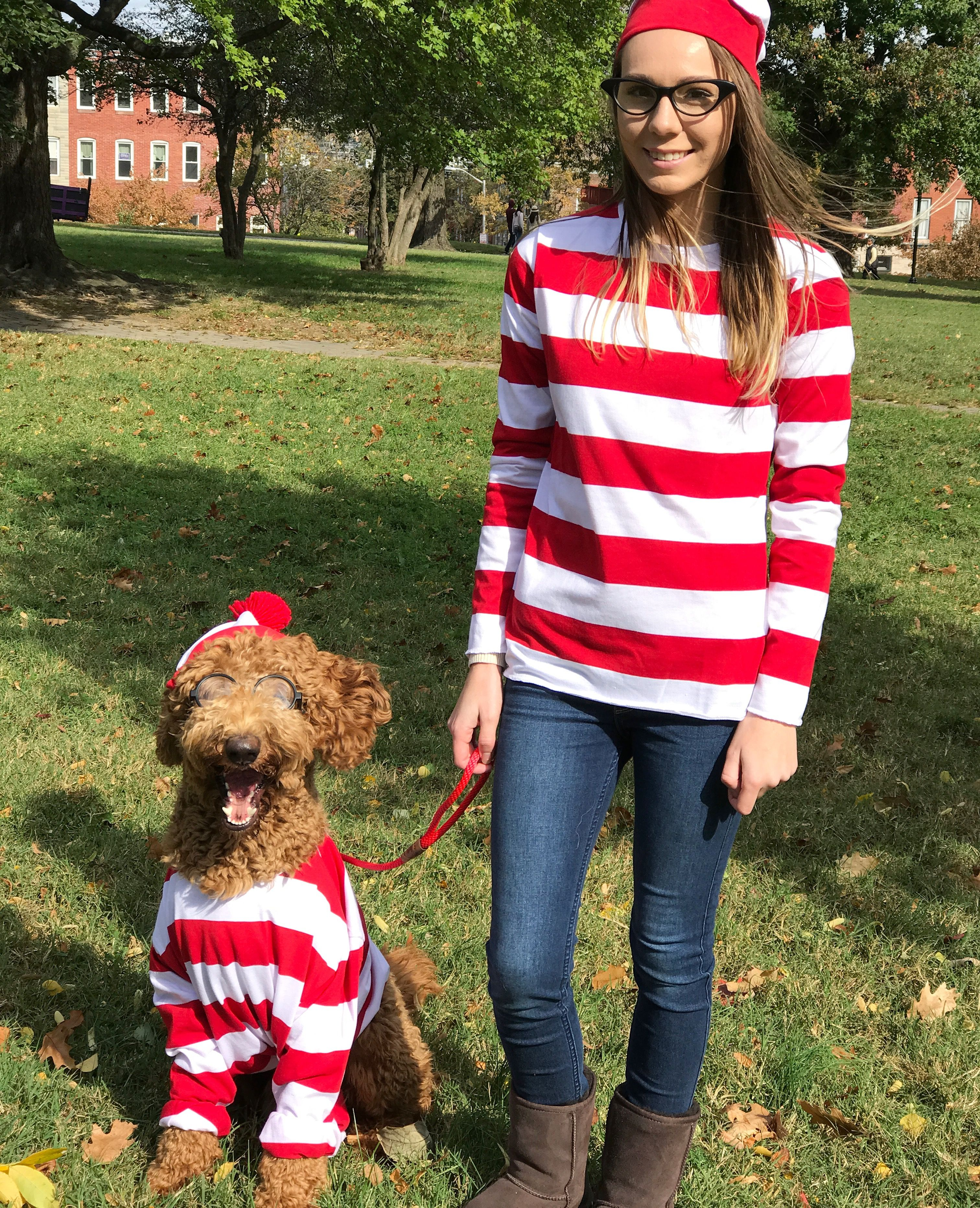 Where S Waldo Costume Goldendoodle