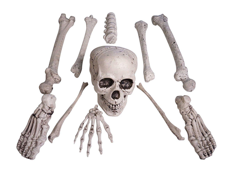 12 Piece Bag Of Plastic Skeleton Bones Indoor Outdoor Halloween Decor Halloween Outdoor Decorations Halloween Skeleton Decorations Spooky Halloween Decorations