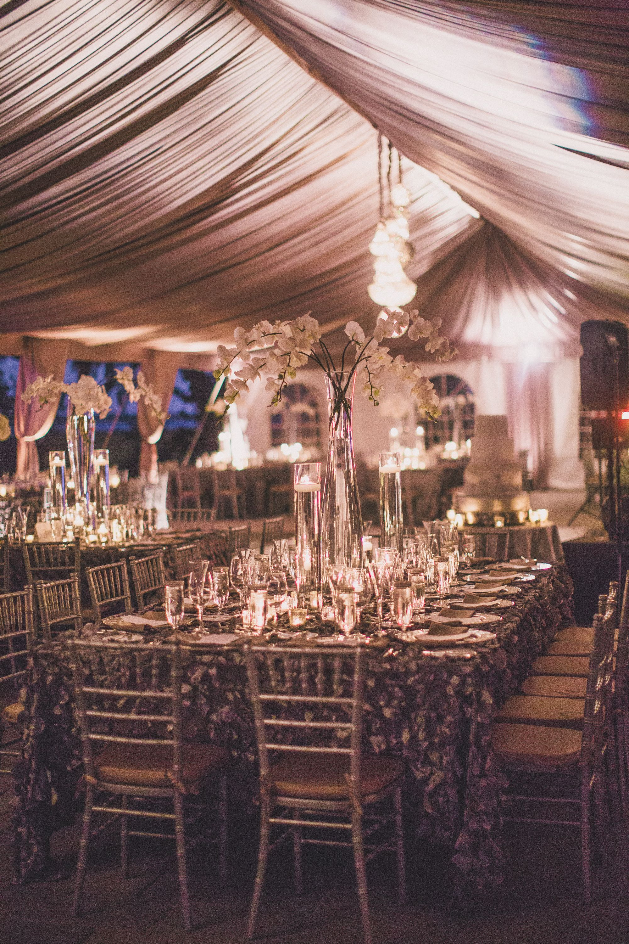 Want Your Tent To Look Luxurious Lighting And Draping Can Do That
