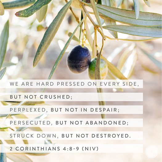 Scripture: 2 Corinthians 4:8-9. We are hard pressed on every side, but not crushed; perplexed, but not in despair; persecuted, but not abandoned; struck down, but not destroyed.