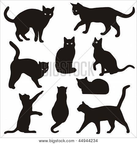 silhueta de gato preto - Pesquisa Google