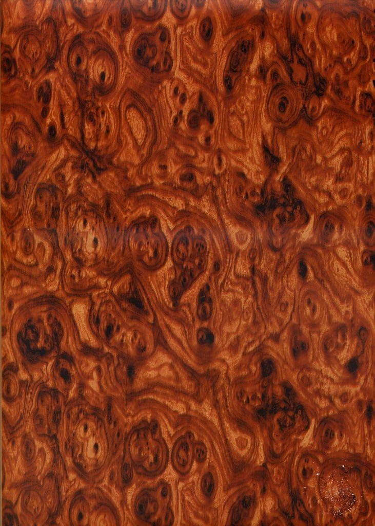 special walnut burl wood grain bois essence pinterest bois exotique exotique et bois. Black Bedroom Furniture Sets. Home Design Ideas