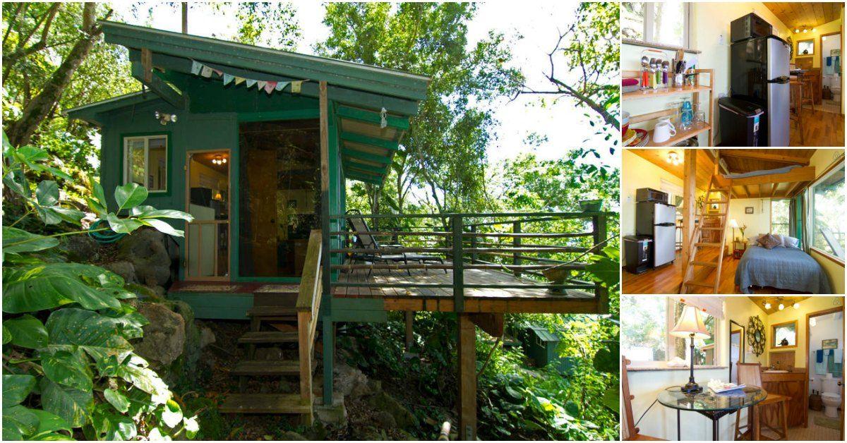 Übernachten Sie Im Winzigen Und Umweltfreundlichen Sunset Beach Treehouse  Bungalow In Haleiwa, Hawaii   Dekoration Ideen 2018