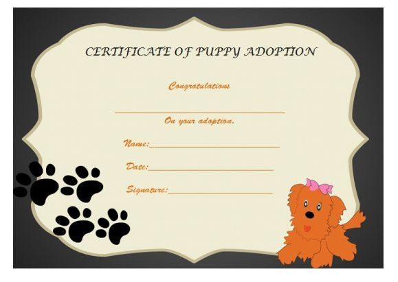 Paw Patrol Puppy Adoption Certificate  Adoption Certificate