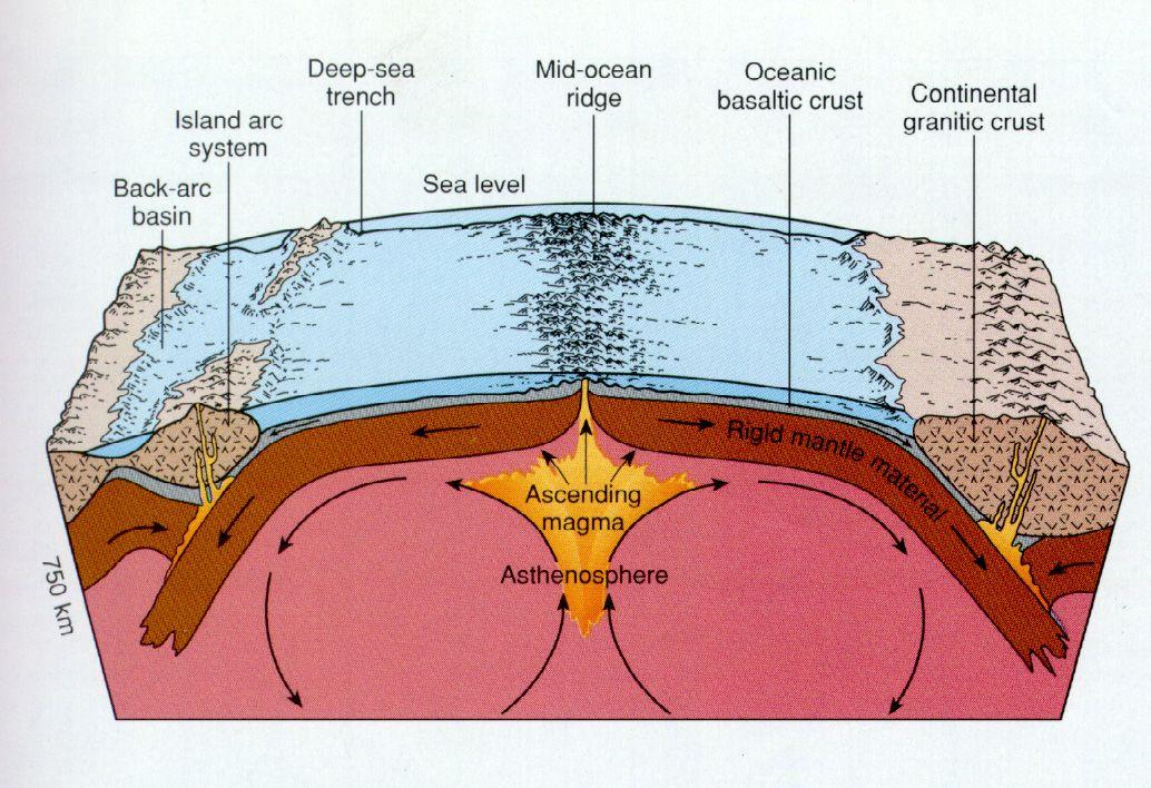 Seafloor Spreading Seafloor Spreading Earth Science Activities Earth Science
