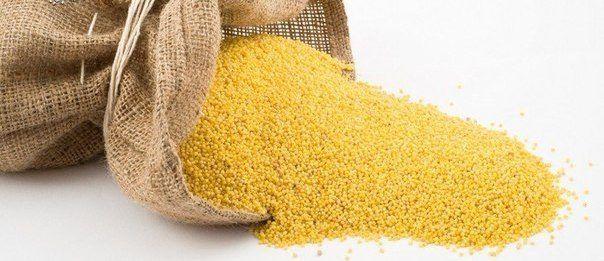 Лечение почек пшеном очень эффективно. Пшено выводит камни и песок ...