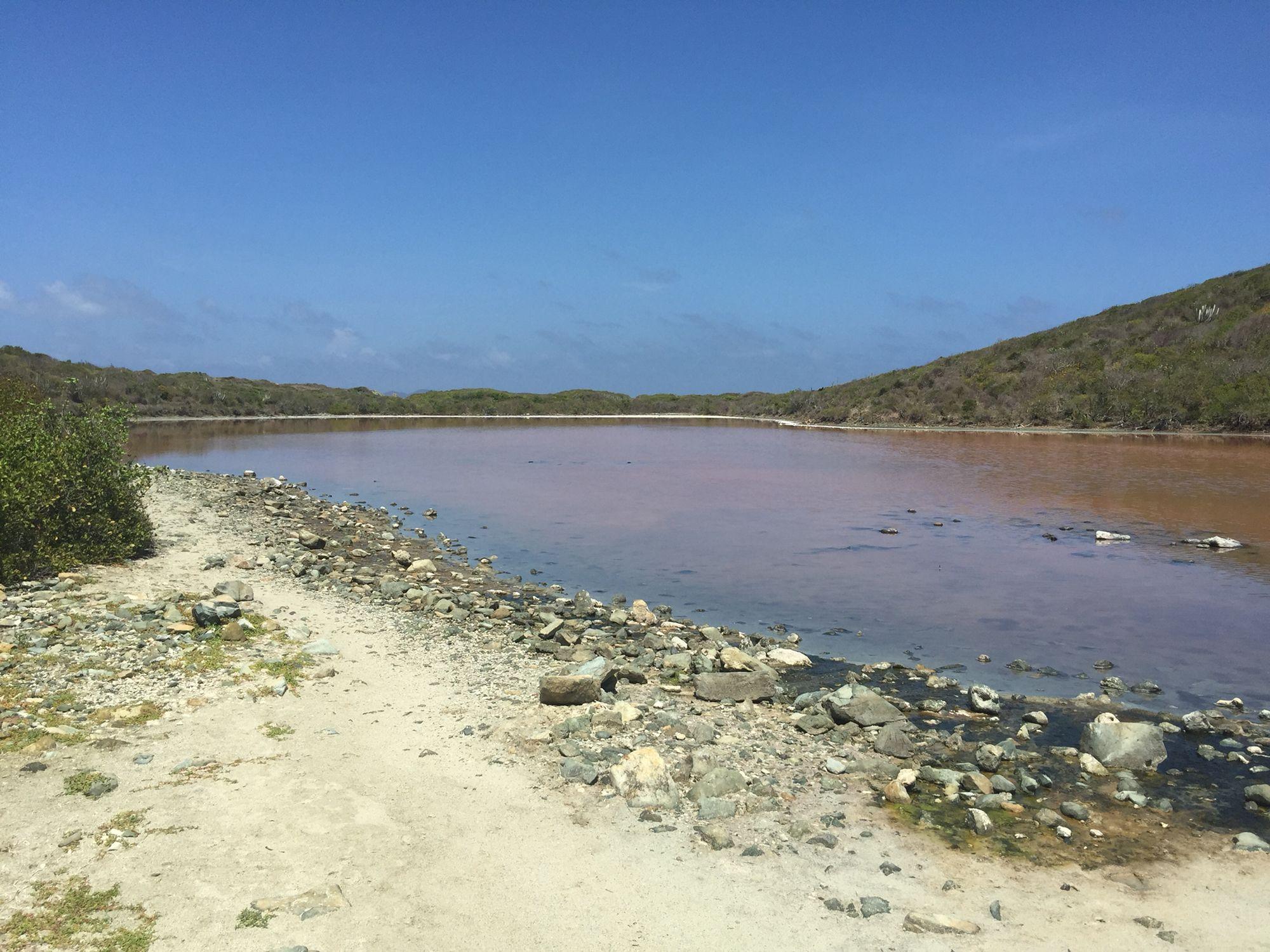 Salt Pond Bay St. John USVI
