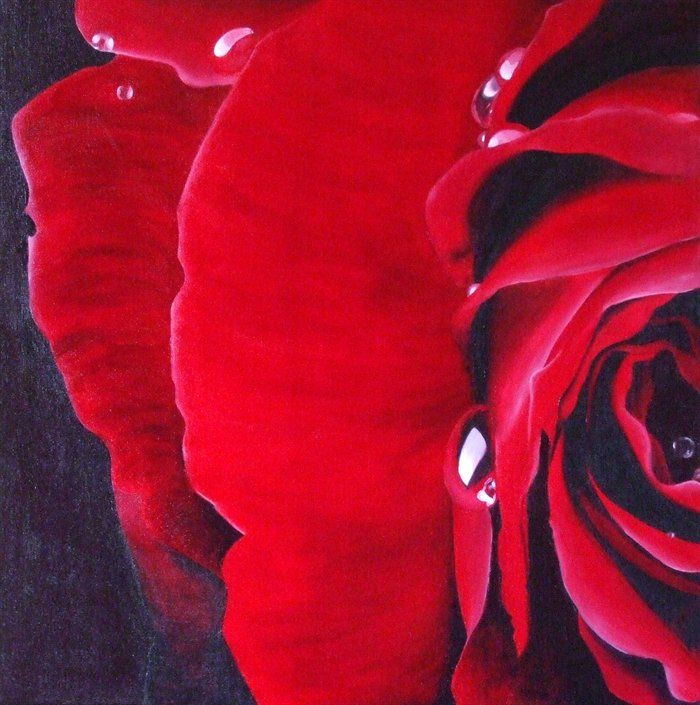 Bloody red rose