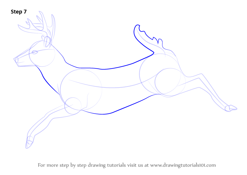 Learn How To Draw A White Tailed Deer Wild Animals Step By Step Drawing Tutorials Deer Sketch Whitetail Deer Deer Drawing Easy