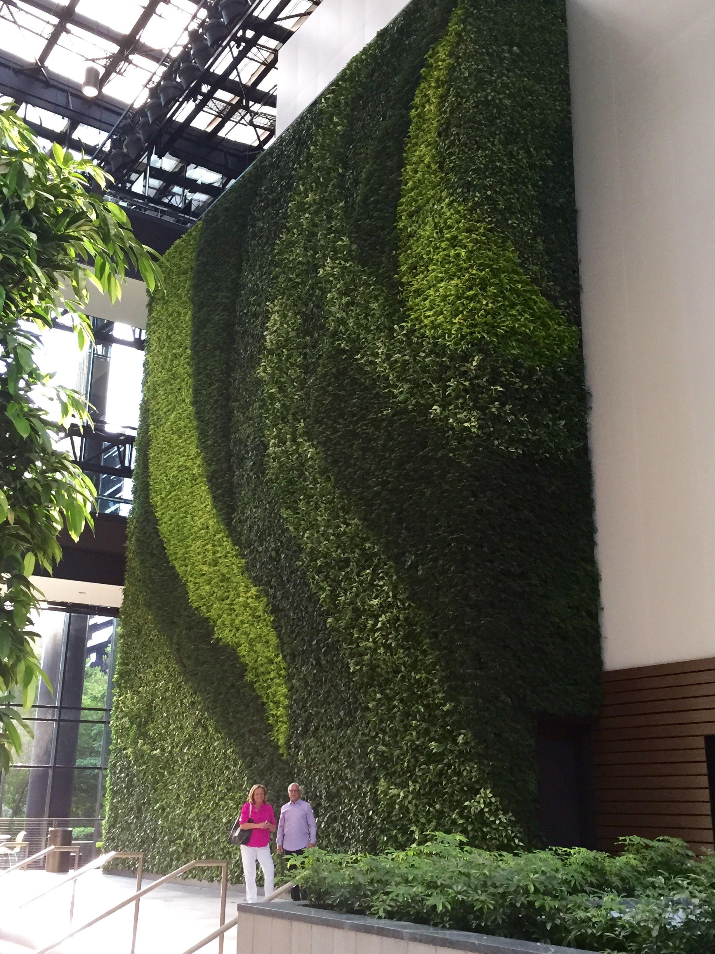 Gsky Living Green Walls: Pin By Debbie Kotalic On Vertical Living Green Walls GSky