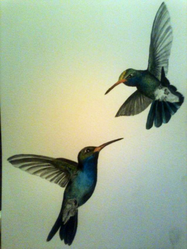 Tattoo ideas Ollis hummingbirds