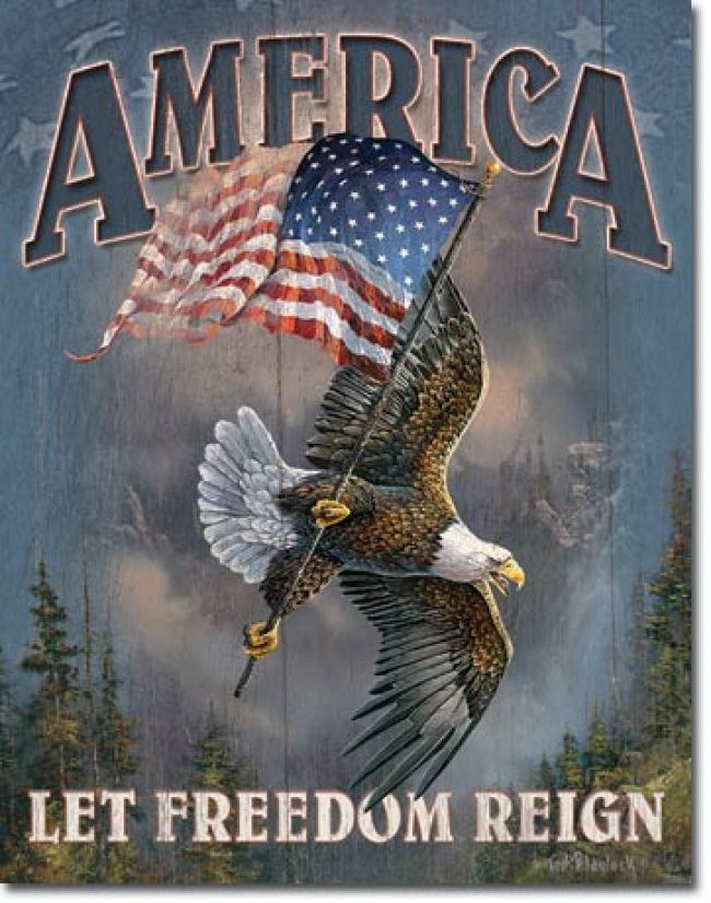 Let Freedom Reign Tin Sign Patriotic Pictures American Flag I Love America