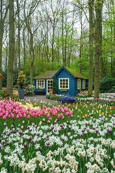 beautiful garden with nice cabin - Buscar con Google
