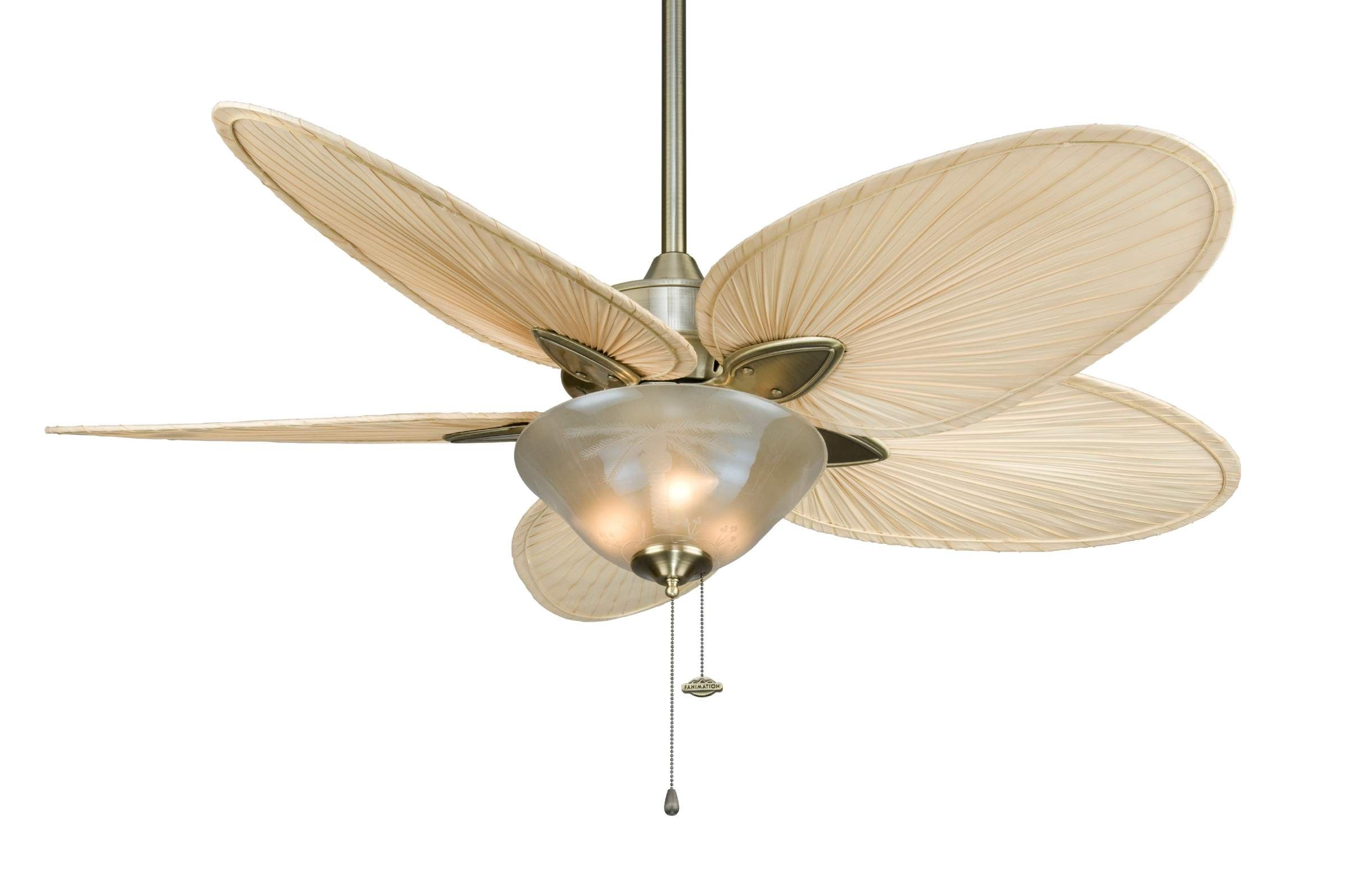 Ceiling Fans With Palm Leaf Blades And Light