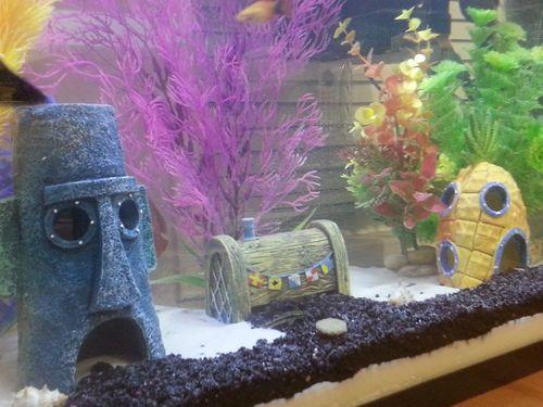 bikini bottom aquarium ornaments aquariums fish tanks. Black Bedroom Furniture Sets. Home Design Ideas