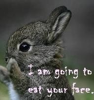 It's true, bunnies are well known to be vicious