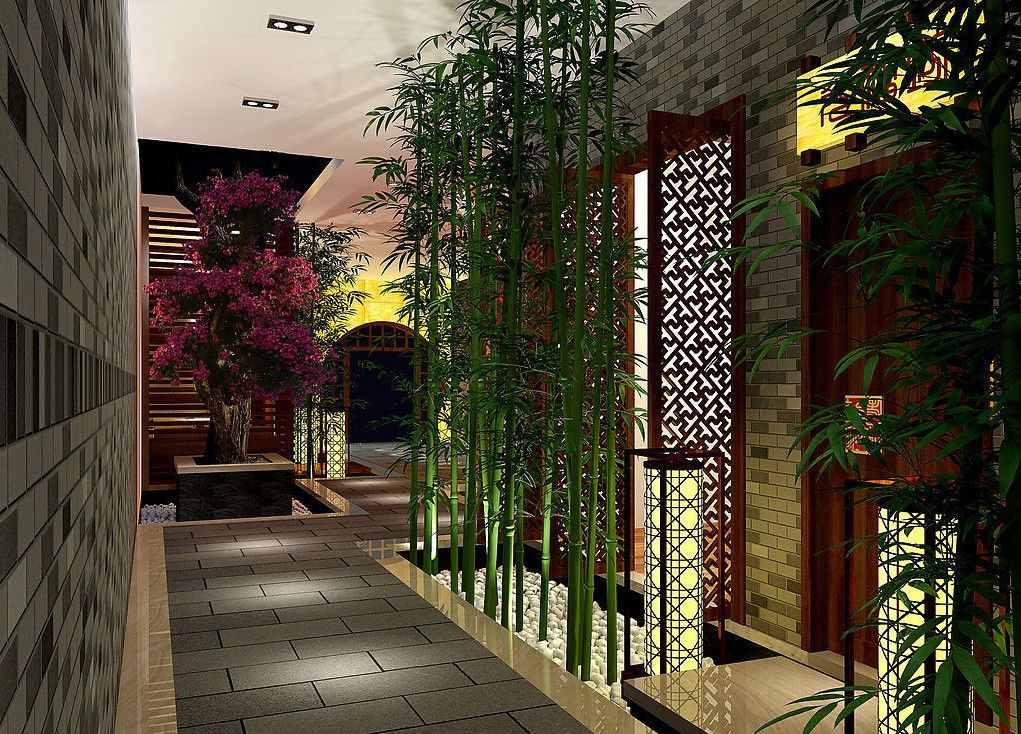 Tall Thin Bamboo Indoors Chesenia Feng Shui Lucky
