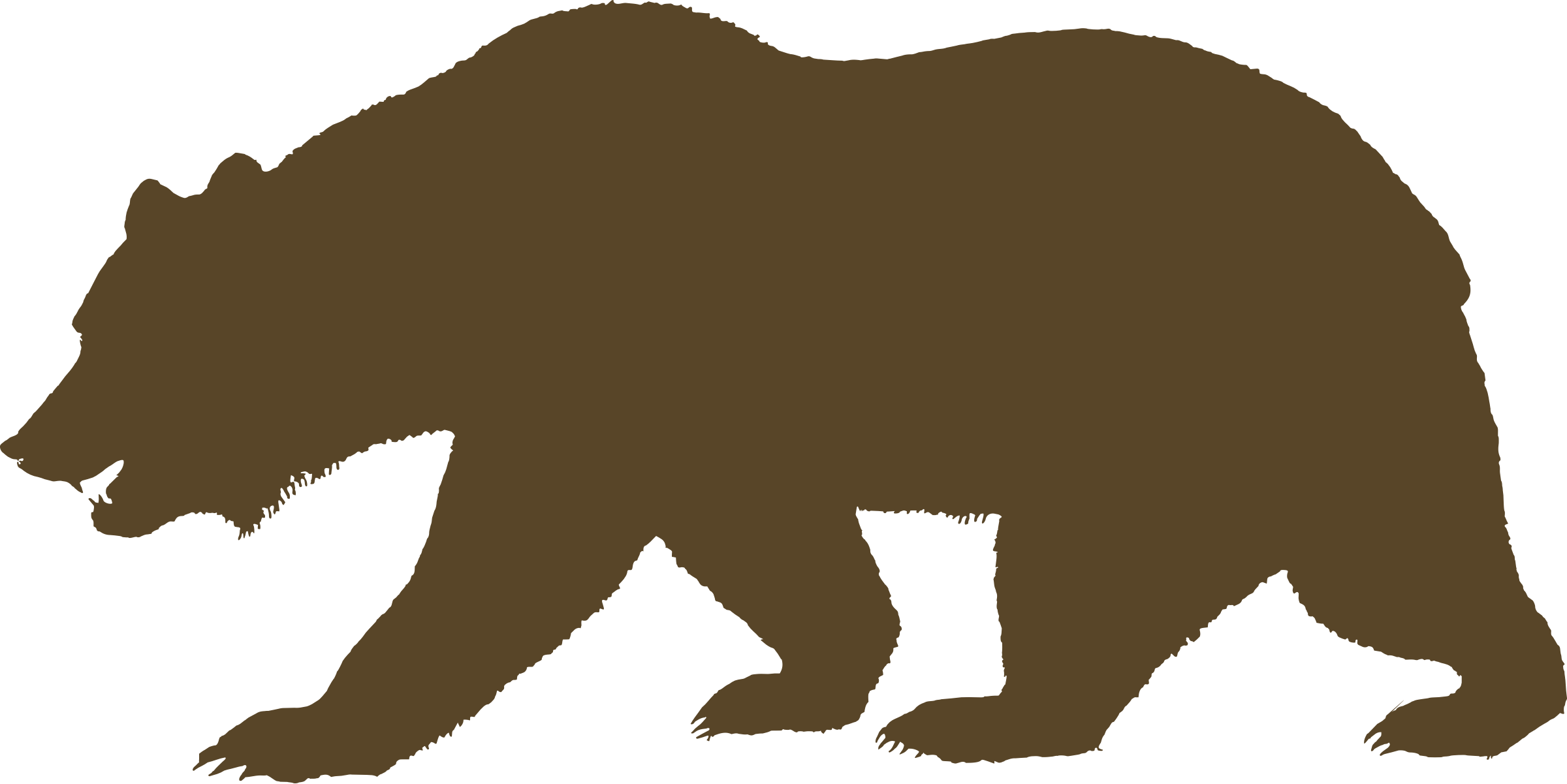 California Bear Google Search Bear Silhouette Animal Silhouette California Bear