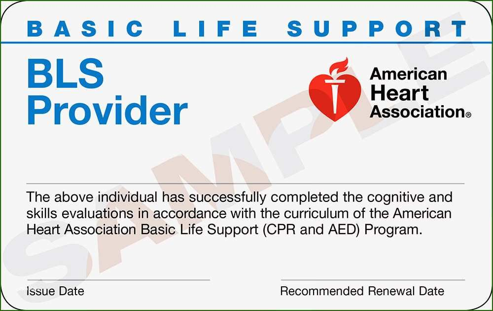 18 Astonishing American Heart Association Cpr Card Template In 2020 Cpr Classes Basic Life Support American Heart Association