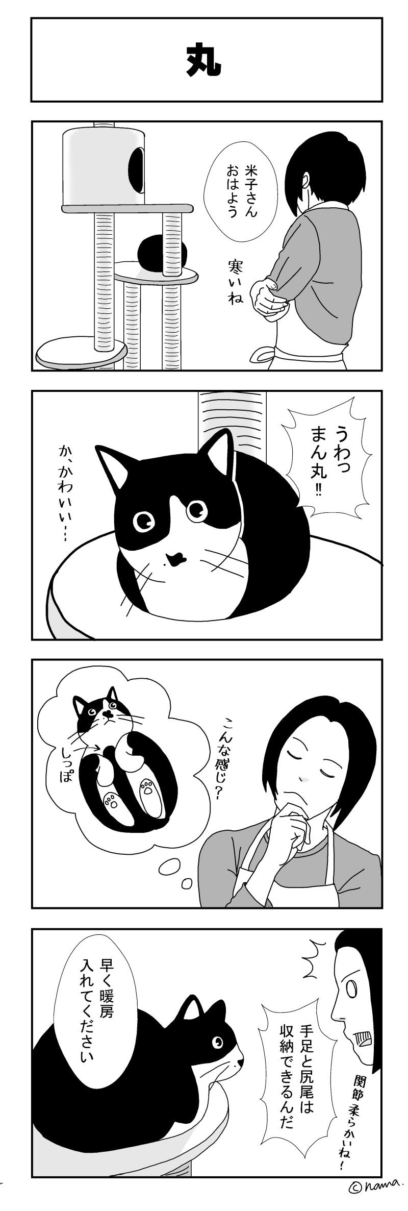 48話 丸 犬 猫 漫画 猫 漫画 猫