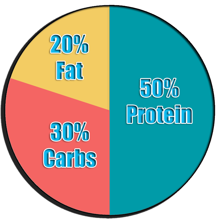 Pie Chart Calorie Intake To Gain Muscle Pie Chart Nutrition