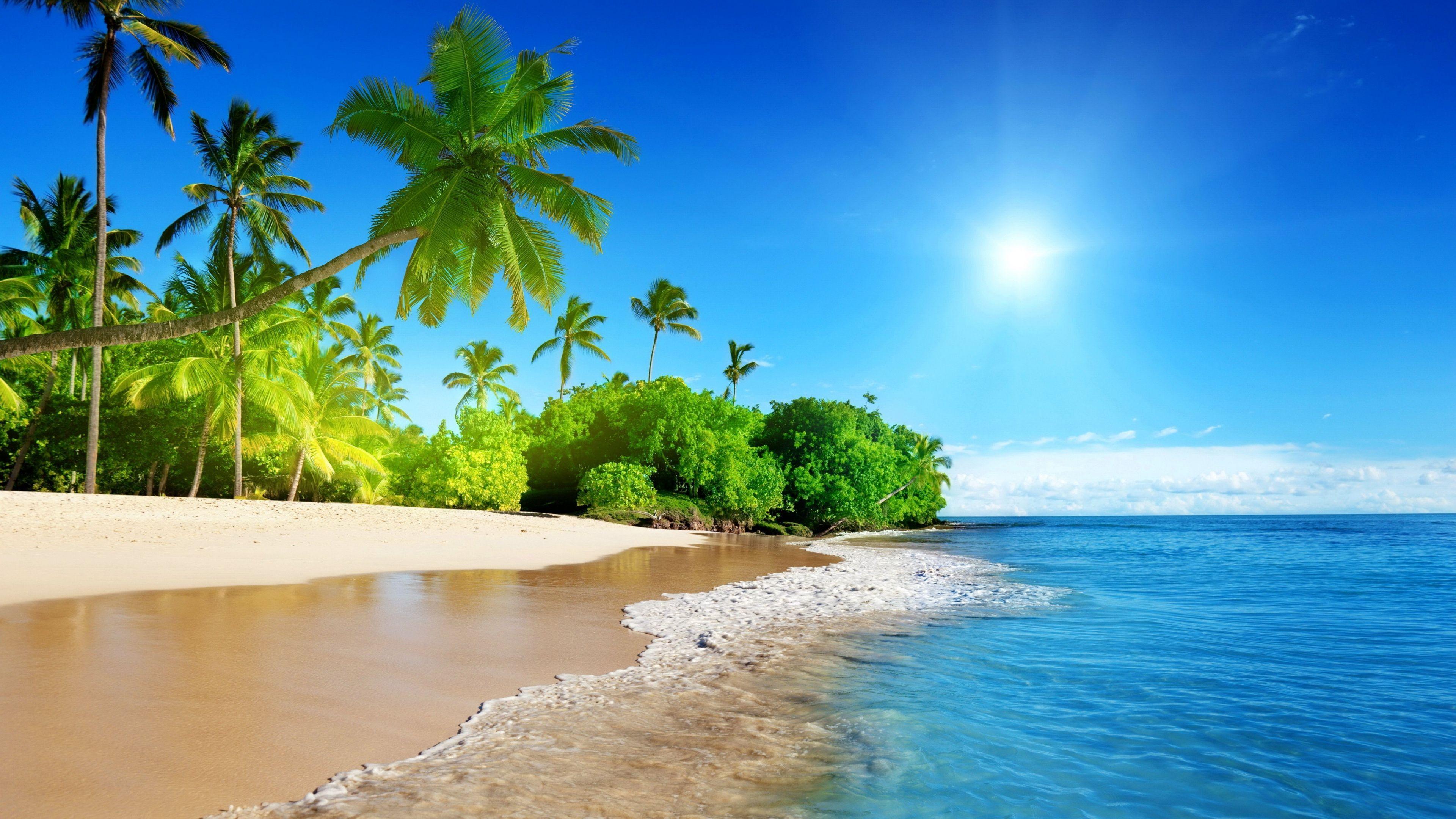 22 64k Ultra Hd Wallpaper 15360x8640 Download 2k Elegant Img Nature Beach Beach Wallpaper Beach