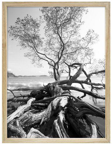 Mcs Art Frame 24x36 Inch Frame Natural Finish 47582 Mcs Http Www Amazon Com Dp B00hr1zpq4 Ref Cm Sw R Pi Dp Ssmmwb1yx90fe Frame Natural Finish Framed Art