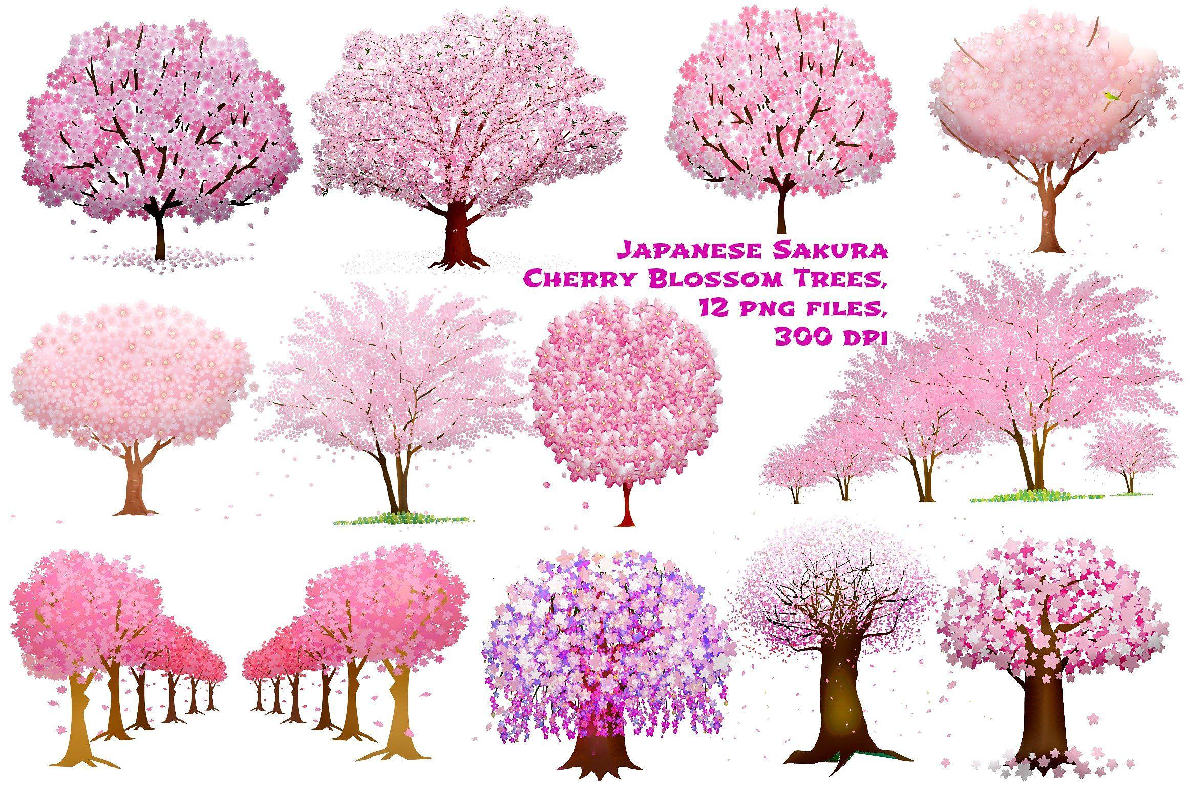 Cherry Blossom Sakura Trees Paper Invitations Announcements Printed Cherry Blossom Tree Tattoo Cherry Blossom Painting Cherry Blossom Drawing