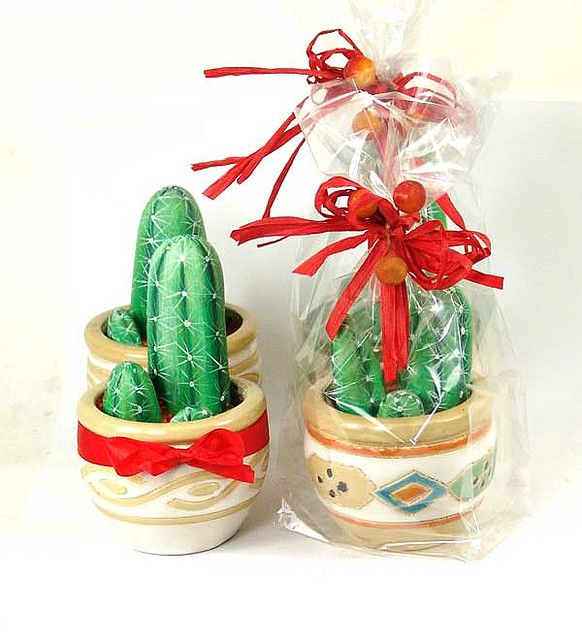 An everlasting gift of rock cacti