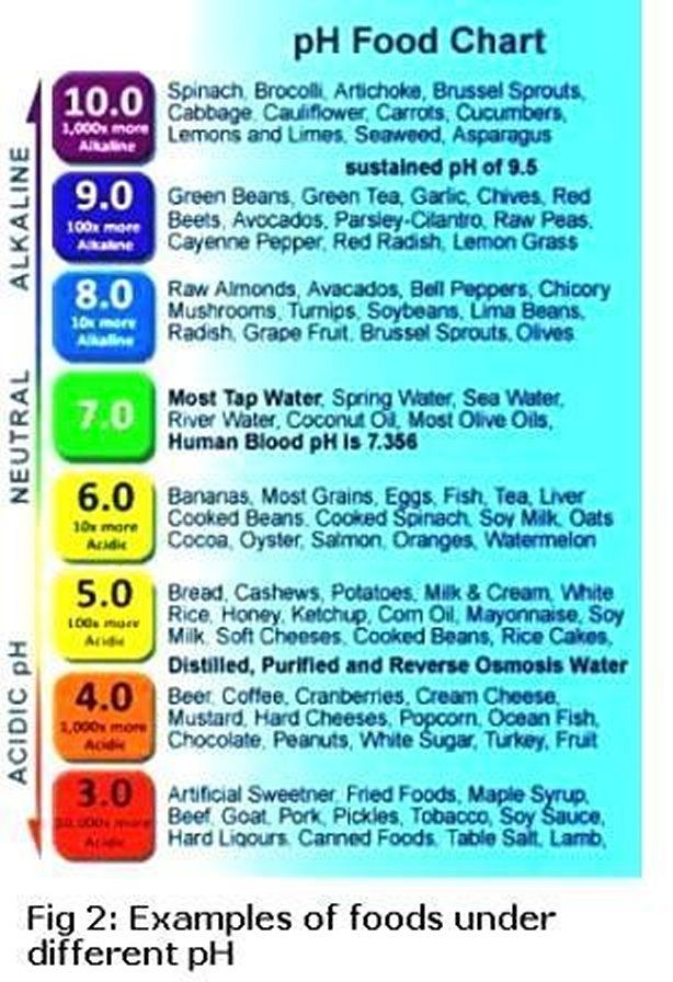 Acid Reflux Food Chart  What Are You Eating Find Out With These