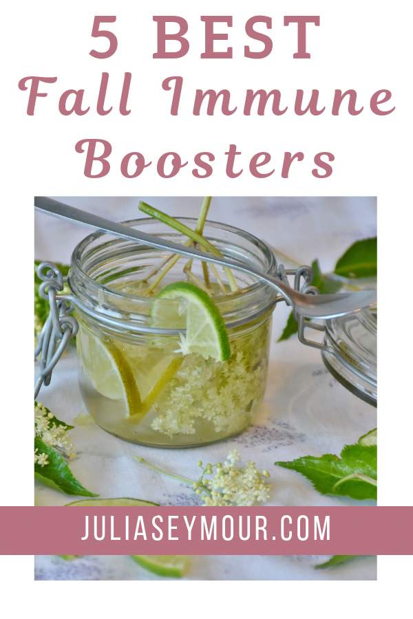 5 Natural Immune System Boosters to help you survive cold and flu season Strengthen your immune system with lemon garlic liquorice elderflower and enchinacea How to boost...