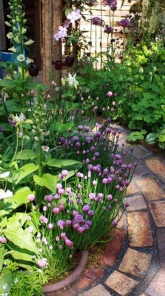 64 Glorious Garden Pathways Jardines, Jardín moderna y Jardín