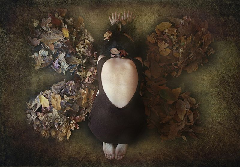 Metamorfosi, Artwork by Romina Dughero