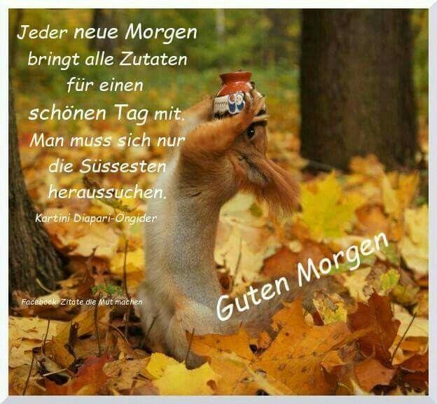 Pin Von Meike Auf Guten Morgen Herbst Zitate Guten Morgen