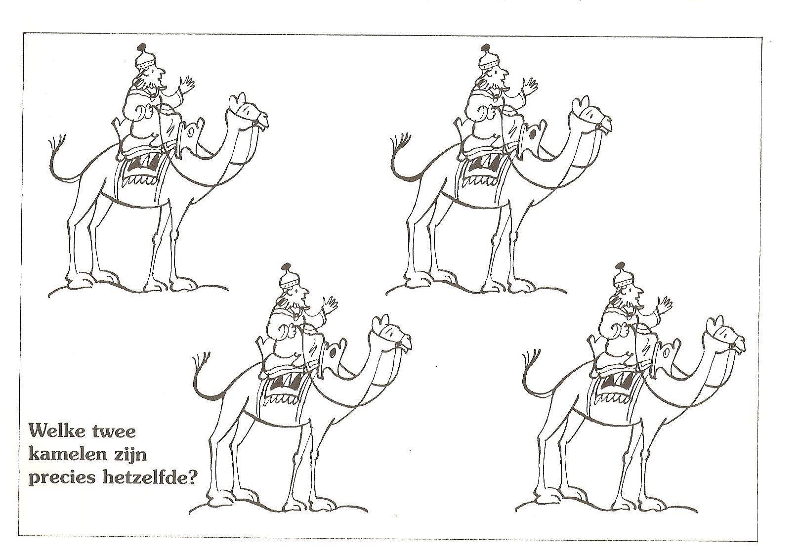 Welke Twee Kamelen Zijn Precies Hetzelfde Wijzen Uit Het Oosten Kerst Kerst Bijbel Voor Kinderen