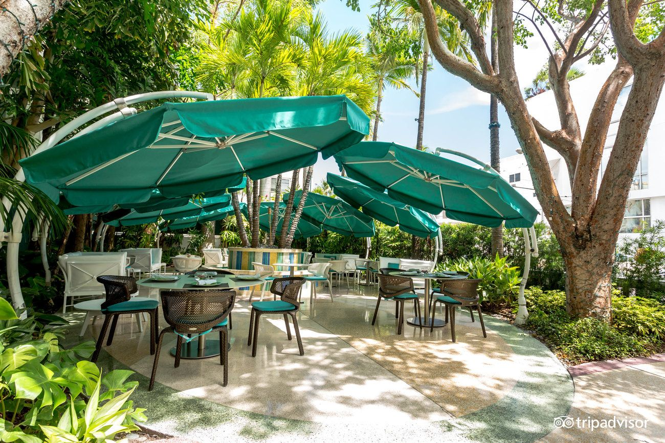 The Hotel of South Beach - UPDATED 2017 Reviews & Price Comparison ...