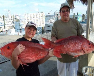 Red snapper fishing aboard the luxury charter boat reel n for Pensacola fishing forecast