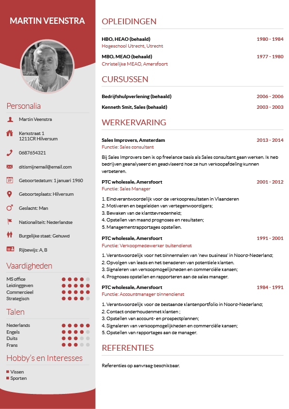 Voorbeeld CV | business | Pinterest | Perfect cv and Template