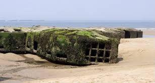 Afbeeldingsresultaat voor bunker overwoekerd