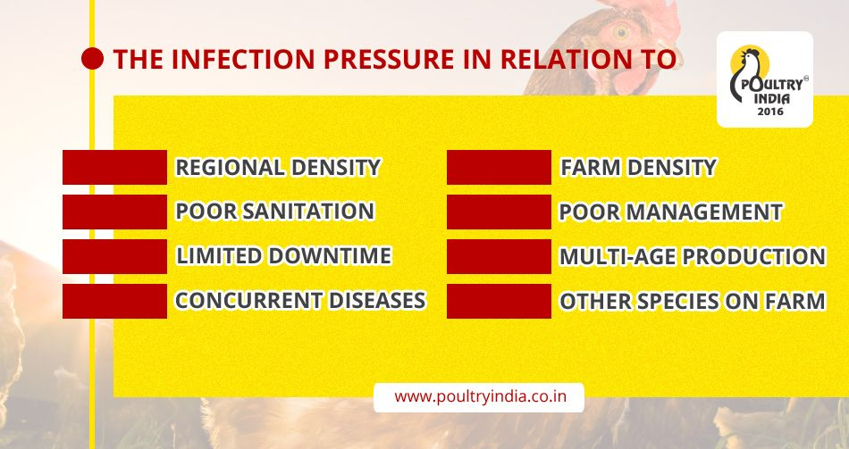 DID YOU KNOW ? Visit us www.poultryindia.co.in Poultry