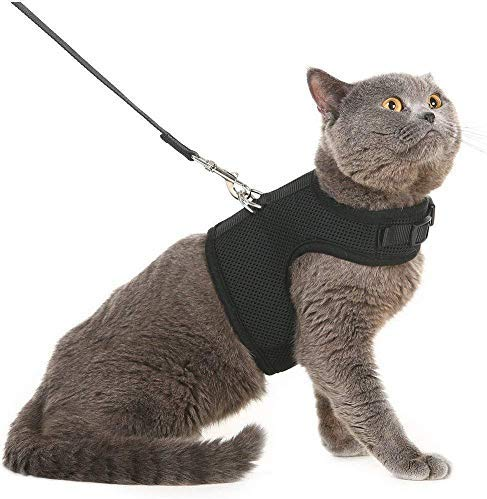 Free Chukchi Escape Proof Cat Harness And Leash For Walking Car Seat Belt Adjustable Soft Mesh Holster Style Best For Best Cat Harness Cat Leash Cat Harness