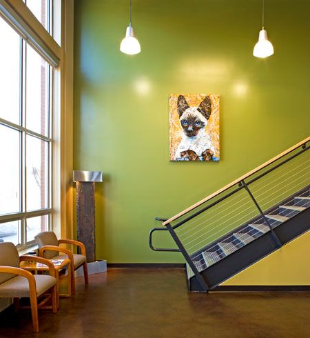 Building Your Veterinary Practice Color Palette Hospital Design Hospital Design Hospital Interior Design Veterinary Hospital