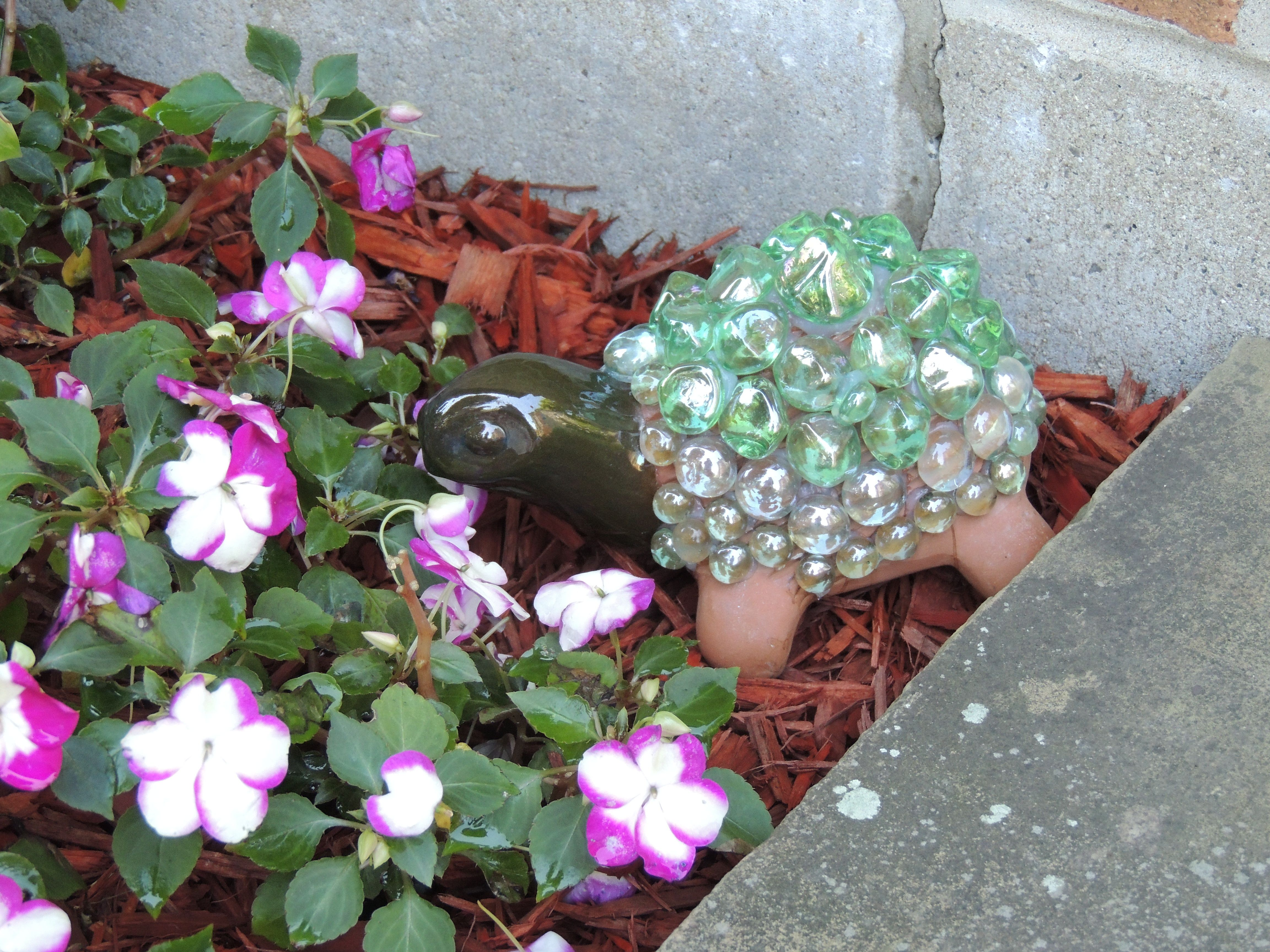 Chia Pet Turtle I covered with Decorative Accent Glass