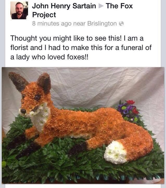 Fox Flower Arrangement | Pop-Culture Flowers | Pinterest | Foxes ...
