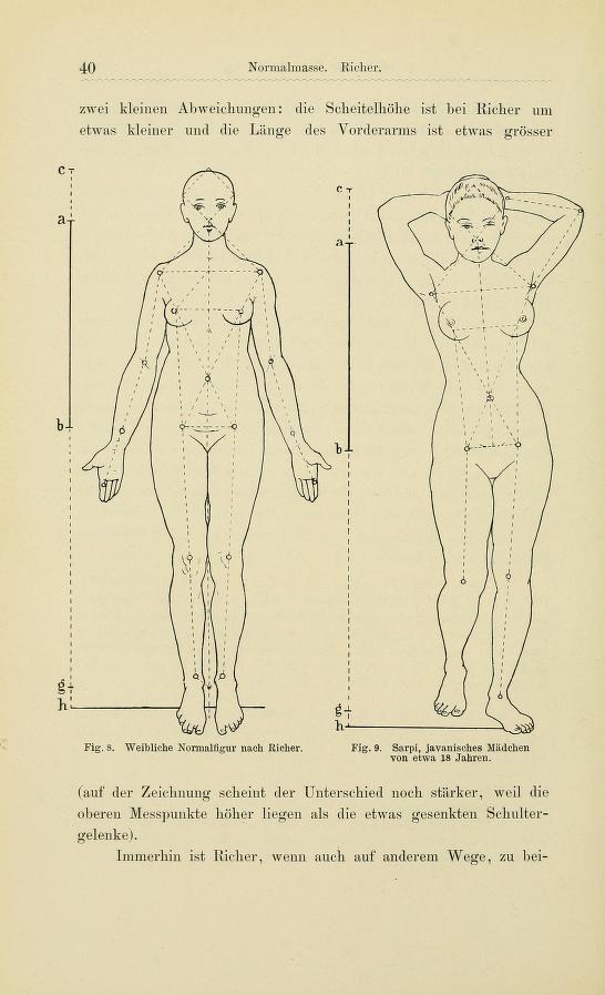 Groß Kontur Des Weiblichen Körpers Ideen - Menschliche Anatomie ...